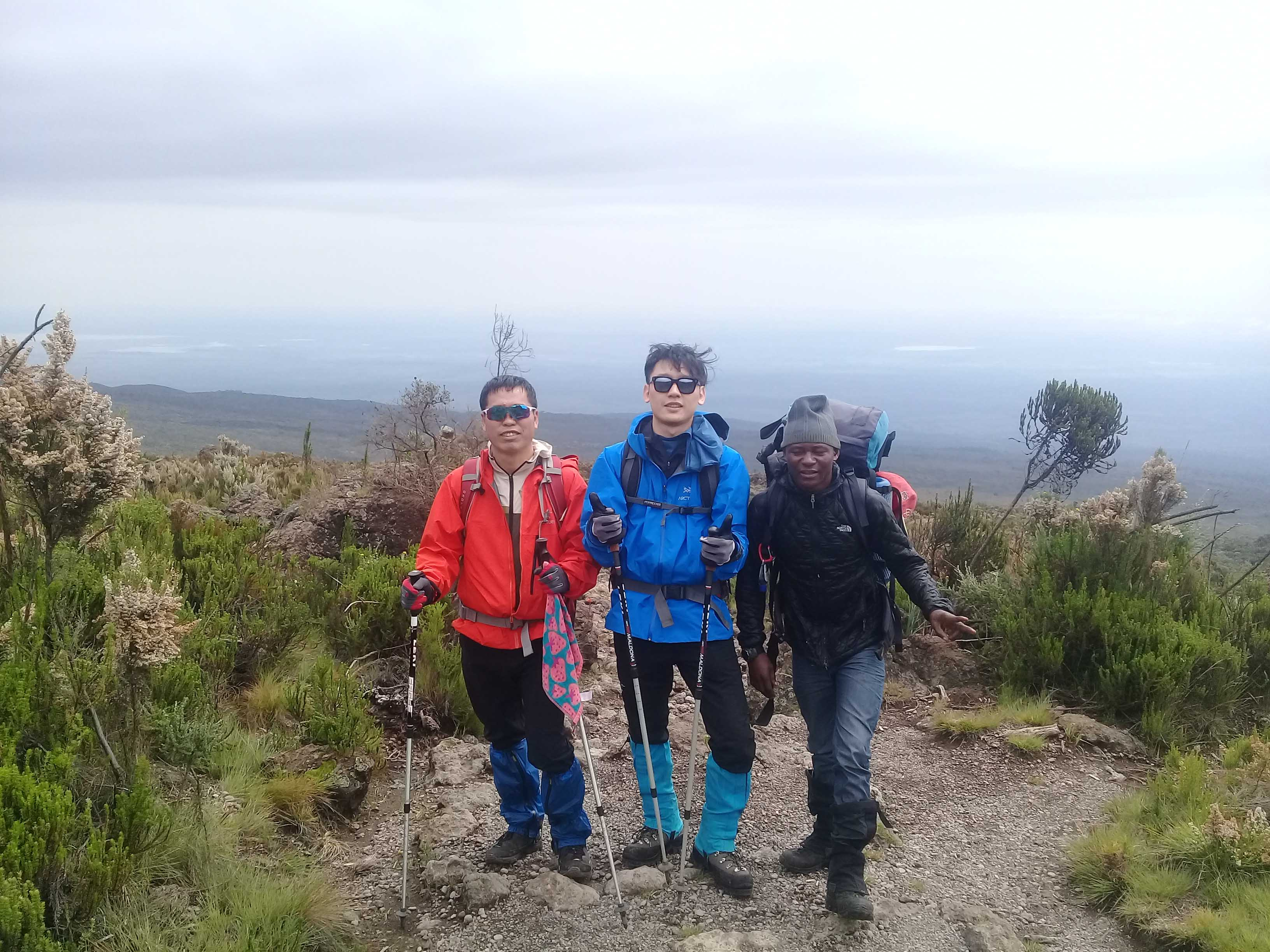 11 Days Northern Circuit Route Kilimanjaro Climbing